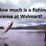 How much is a fishing license at Walmart?