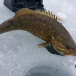 best ice fishing in the usa